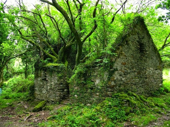 Killarney Irlanda - Il Sentiero di Kerry tra Sneem e Kenmare