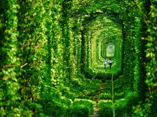 Ucraina - Tunnel dell'amore