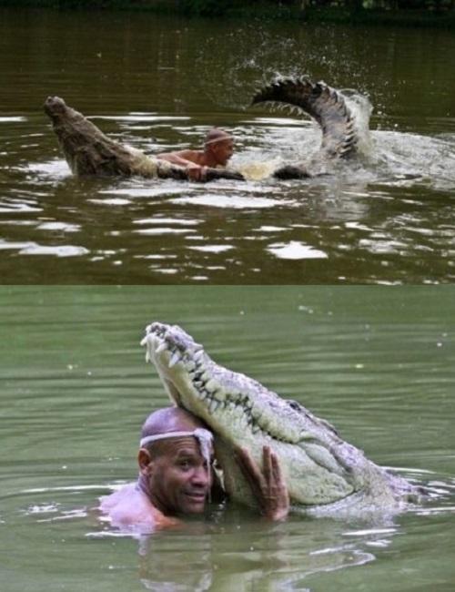 coccodrillo-e-pescatore