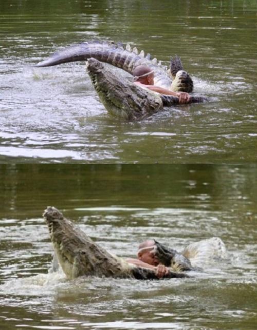 uomo alligatore