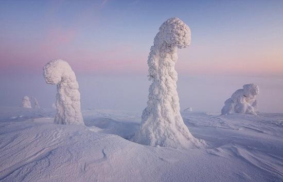 Sentinelle artico Finlandia