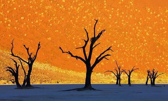 valle della-morte Namibia