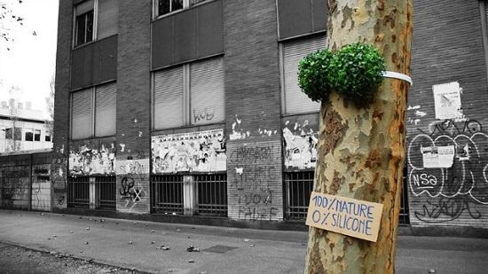street art albero