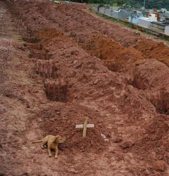 brasile-veglia-la-tomba-del-padrone