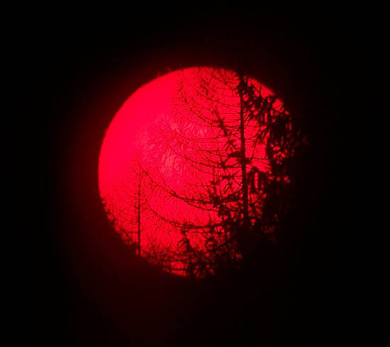 Sole al tramonto