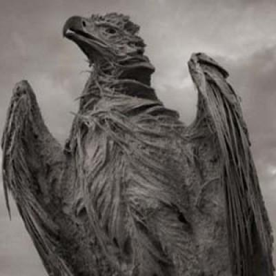 In Tanzania il lago Natron trasforma gli animali in statue
