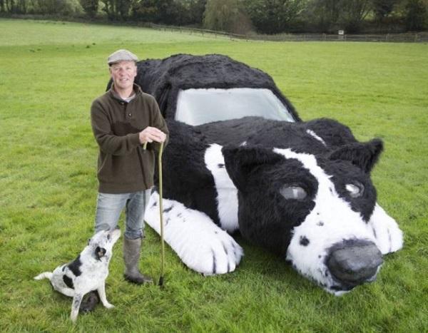 auto cane pastore