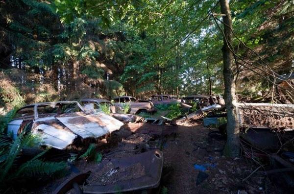 belgio cimitero automobili abbandonate