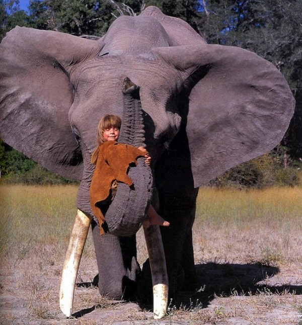 bambina elefante savana