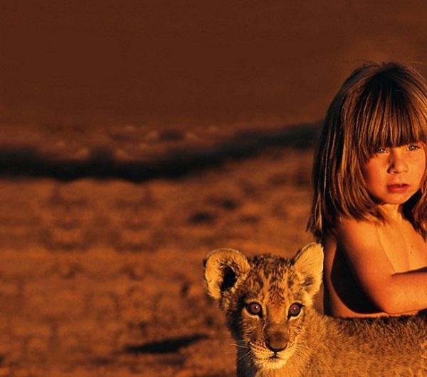 ghepardo africano