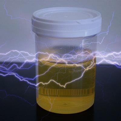 Energia elettrica prodotta dalla pipì grazie ad una speciale biopila