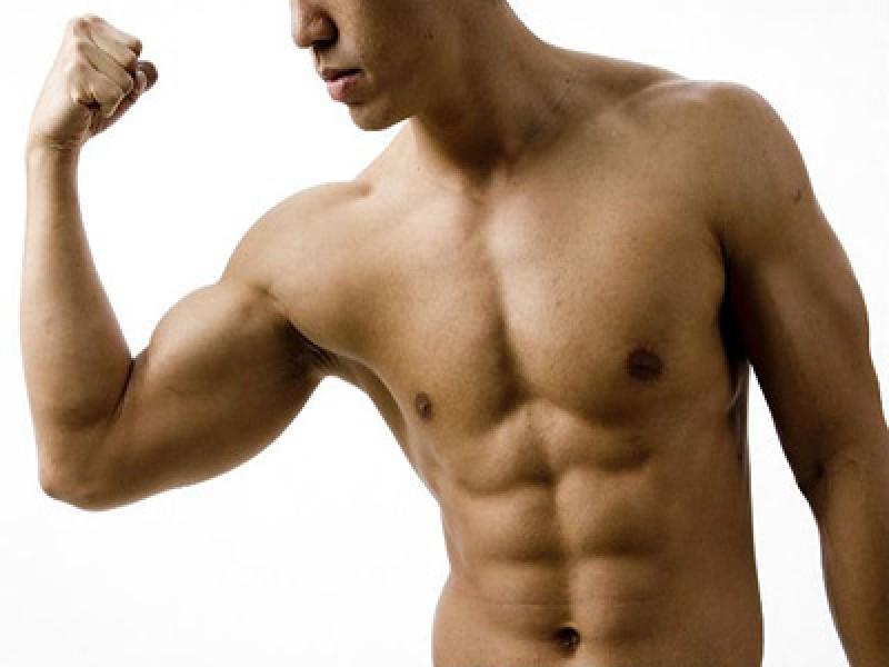 Quanti muscoli ci sono nel corpo umano?