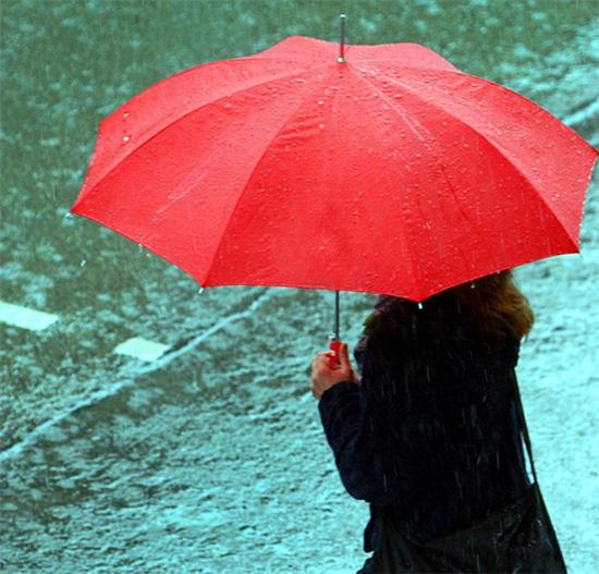 profumo della pioggia
