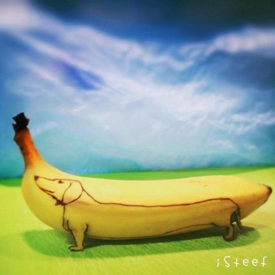 cane fatto con le banane