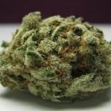 Perché fumare marijuana fa venire la fame chimica?