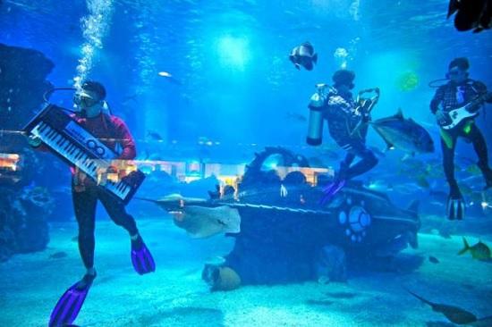 musica in acqua viaggio