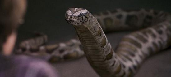 il serpentese