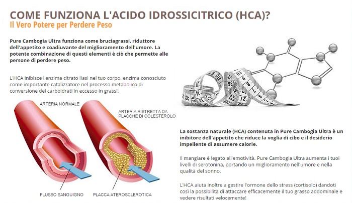 hca come funziona acido idrossicitrico
