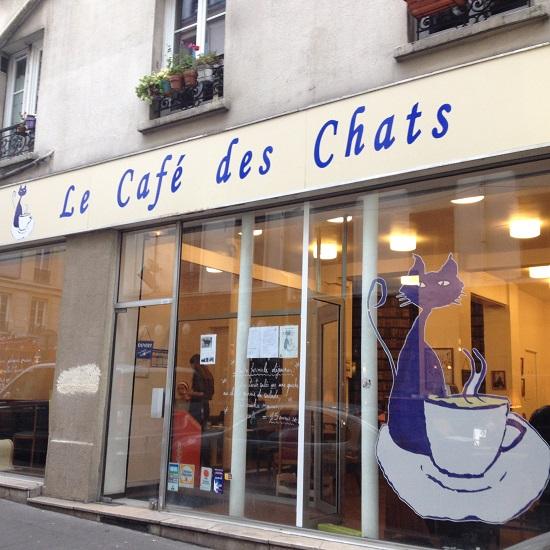 parigi le cafe des chats