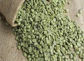 Caffè verde la bevanda che fa dimagrire naturalmente