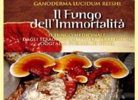 Fungo Reishi o Ganoderma lucidum il fungo medicinale dell'immortalità