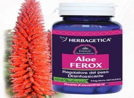 Aloe Ferox per dimagrire e perdere peso velocemente