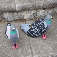 Dal Giappone arrivano le scarpe a forma di piccione