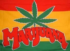 Coltiva marijuana in ascensore
