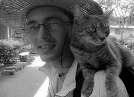 Kitty, la gattina che sta facendo il giro del mondo