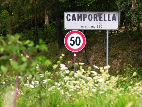 reggio-emilia-camporella