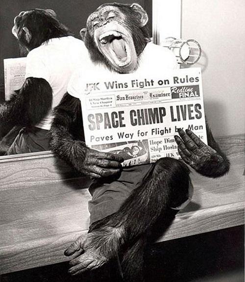 36-missione scimpanzè nello spazio