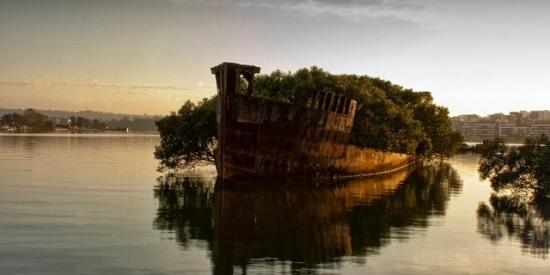 Australia - Homebush Bay - Relitto della SS Ayrfield