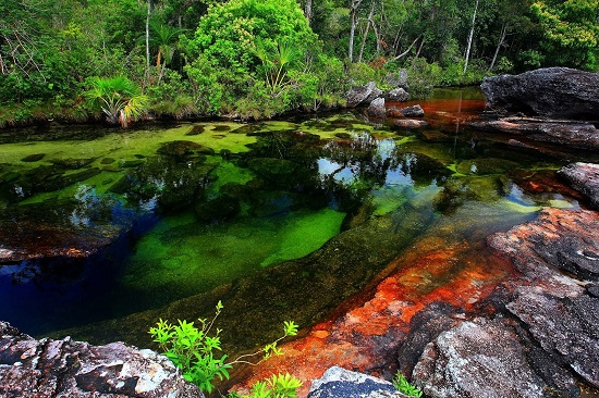 Fiume Cristales Colombia