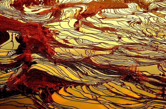 Le terrazze di riso di Yuanyang Cina
