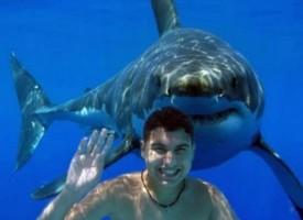 Ragazzo si tuffa nel lago con una GoPro ma uno squalo appare sotto di lui