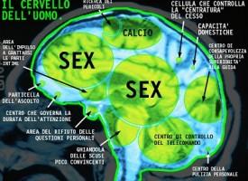 Il cervello dei maschi fatto per pensare al sesso