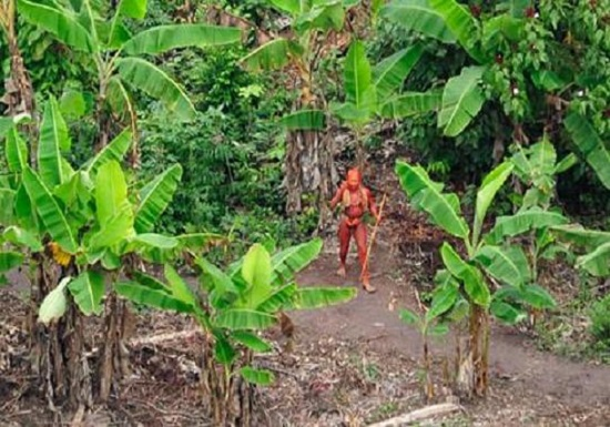 tribu scoperta isolata