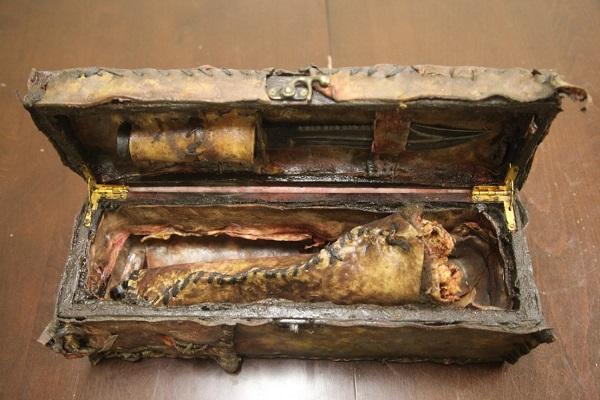 cassa pelle ossa umane