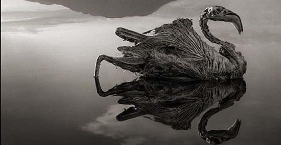mistero lago natron
