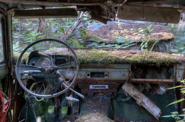 foresta belgio cimitero auto