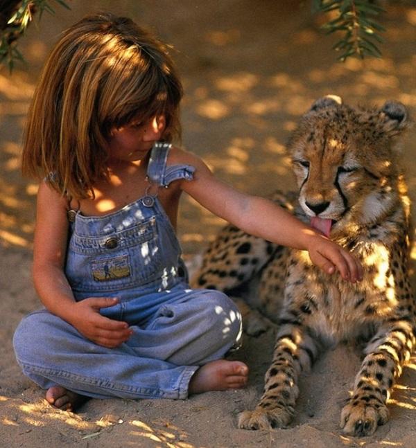 bambina gioca con leone