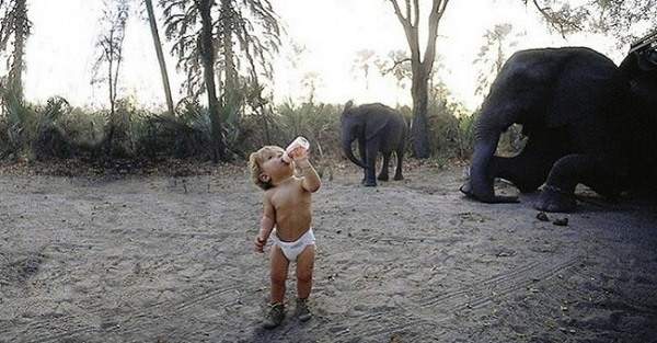 bambina latte elefante
