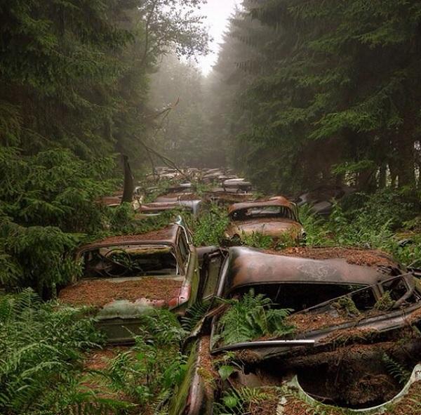 cimitero auto belgio