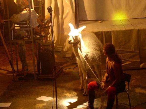 lama circense circo