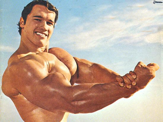 quanti muscoli abbiamo