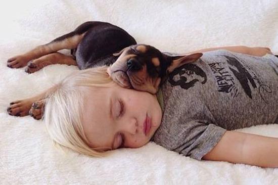 bambino dorme e impara