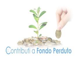 Finanziamenti a fondo perduto: cosa sono e come richiederli