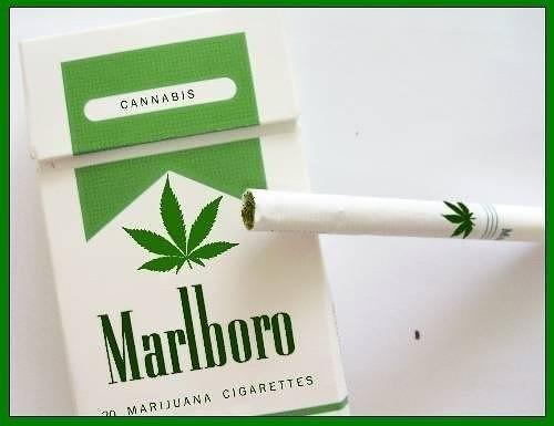 MARLBORO-M