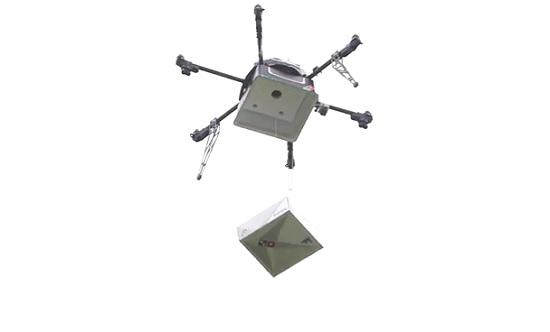 domino droni consegne