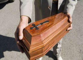 Le carcasse di cani e gatti non sono più rifiuti speciali, a Palermo il primo centro per la cremazione
